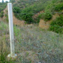 唐山刺丝刺网 刺绳和护栏网 刀片刺绳网