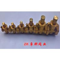专业生产 国标黄铜减压阀 卓科 阀门内螺纹黄铜减压阀dn15 安徽 厂家直销