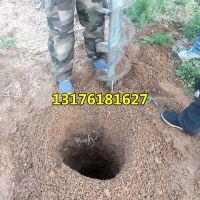 植树打洞机 手提式挖洞机 立柱地钻挖坑机