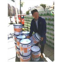 内外墙水漆品牌加盟外墙涂料厂家批发直销