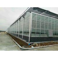 陕西渭南保温性好玻璃型温室大棚采光足专业建造公司
