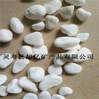 厂家直销园艺白石子 白色鹅卵石 铺面装饰用的小白石头 汉白玉石子