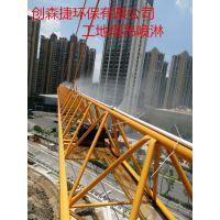 湖北供应咸宁工地塔吊喷淋LS-06安装