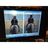 障碍赛马运动分析系统