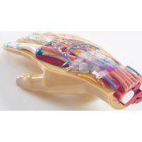 中科院医疗内腔模型3D打印机