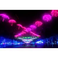 国际灯光秀灯饰画生产设计厂家国际灯光节出租