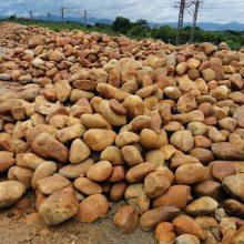 庭院假山鱼池围边石小型黄蜡石批发广东黄蜡石多少钱一吨