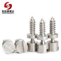 不锈钢非标螺丝深圳世世通专注非标螺丝生产20年