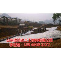 内江钠基膨润土防水毯 建筑工程用钠基膨润土防水毯供应商