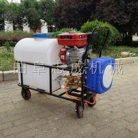 热卖志成汽油推车打药机自动回管杀虫喷雾器农用大棚高压喷药机