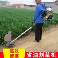 灌木牧草收割机 全能茶园新款锄草机 润华研发新款锄草机
