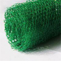 火热大卖中!山东绿色环保三维植被网垫 复合保护层护坡专用