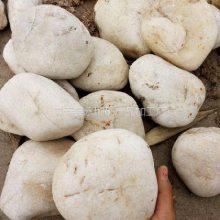 3-5公分机制白鹅卵石 河北雄安新区纯白色鹅卵石批发