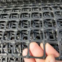 pvc塑料网 中国塑料网 养殖网、塑料筛网、养鸡网、养鸭网