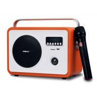 狮乐广场舞便携式蓝牙音响狮乐电瓶箱SD-6带无线话筒复古式收音音箱