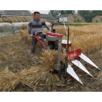 牧草柴油机割晒机 小麦秸秆收割机 芦苇割晾机 润众