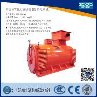 高压6kv电动机Y2-HV 355-4-250KW电机中达ZODA厂家