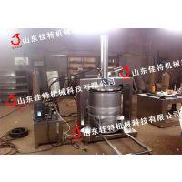 杏鲍菇压榨机 佳特液压式压榨机