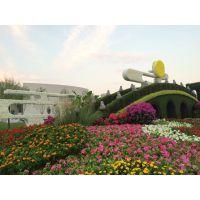 新园五色草观叶立体造型-桥001