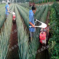 梅县蛋树种植杂草清理开沟施肥机 自走式手扶汽油田园管理机价格询问