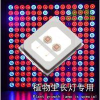 供应LED2835 植物红 730nm 金线铜支架 光弘芯片14MIL 0.5W双晶