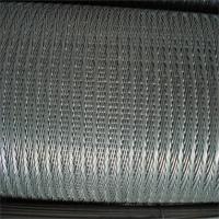守信RZ-66345人字网带 果蔬清洗网带 可议价