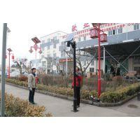 广胜照明厂家供应 20WLED太阳能庭院灯 新款太阳能园林路灯