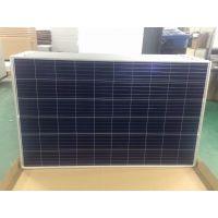 厂家直销多晶270W太阳能组件