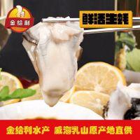 南京海鲜批发生蚝在哪里 生蚝进货货源