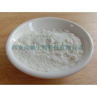 菊芋提取物 菊粉90% 尚诚生物