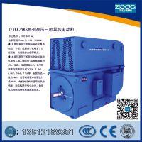 紧凑型高压10kV电动机Y2-HV 400-4-250KW 10KV电机ZODA厂家