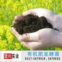 有机肥发酵 有机肥发酵菌 修复土壤 堆肥发酵 农用微生物菌剂