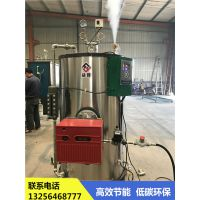 全自动蒸汽发生器亮普热效率高,环保达标