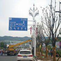供应广顺牌LED景观路灯(GS-LD081500)