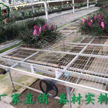 温室苗床必备配件-育苗穴盘-增产增效-厂家直销-安平华耀