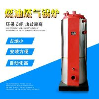 泰安金锅厂家生产销售加温用燃油气常压热水锅炉 烧多种燃料快装锅炉
