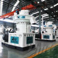 安徽阜阳生物质制粒设备厂家直销 稻壳颗粒机 木屑造粒机 可分期