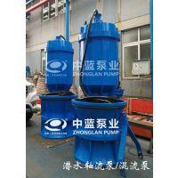 雨季排涝泵站更换用QZB轴流泵厂家