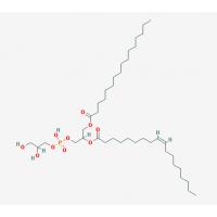 1-棕榈酰基-2-油酰基磷脂酰甘油POPG|81490-05-3
