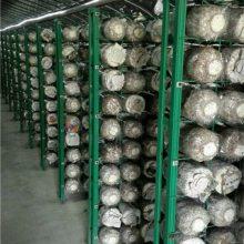 武汉食用菌网格架