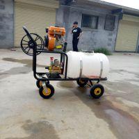 果园消毒打药机喷雾器 农场灭虫弥雾机 启航果园高压打药机