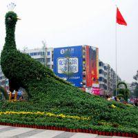 五色工艺 大型艳丽孔雀户外绿色雕塑园林景观人造仿真植物道具工厂
