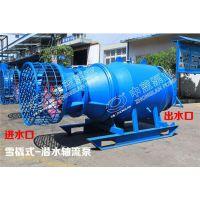 斜拉式/卧式潜水轴流泵