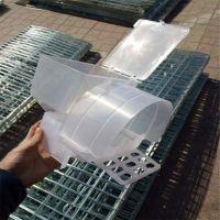 鸽子食盒 PE自动食槽 鸽笼用蛋窝 粪板 鸽子用水管 飞创厂家全国发货