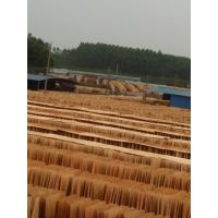 广西鲁安长期生产各种规格的优质桉木单板 量大从优