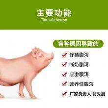 养育肥猪用什么饲料添加剂调节肠道效果好