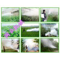 给水稻打药真好用的弥雾机 便携树木果园汽油喷雾器