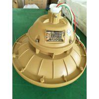 森本电磁感应灯SBF6102-YQL40免维护节能防水防尘防腐灯,护栏立杆式安装