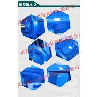 YX3高效三相异步电动机 YX3-200L--6-22KW厂家直销