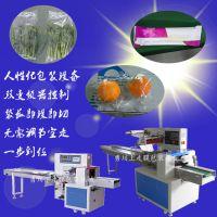 泉州互惠共利自动化凝胶管包装机 医药包装机器封口严密质量保证